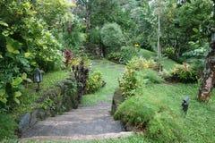 Staircased gräsplanträdgård royaltyfri bild