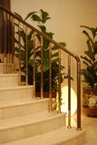 Stairs. And greenery insyde the building Royalty Free Stock Photography