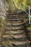 Stairs. Stone stairs coincide yellow foliage Stock Images