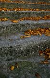 Stairs. With leafs in autumn leading to old church Royalty Free Stock Image