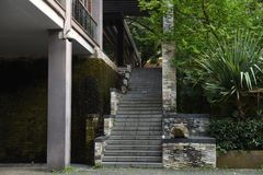 Stairs accompanied by green vegetation royalty free stock photography