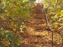 Stairs in autumn imagenes de archivo