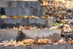 Stairs in autumn Imagen de archivo
