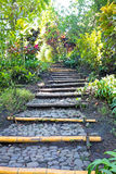 Stairs in a beautiful tropical garden. In Indonesia Stock Photography