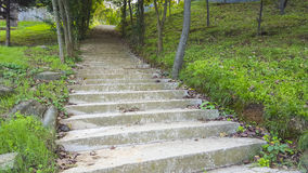 Stairs. In the Botanical Garden of Istanbul Stock Photography