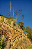 Stairs in Cap Salou. Province of Tarragona , Spain Stock Photography
