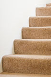 Stairs. Carpted stairs in a house against a white wall Royalty Free Stock Image