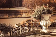Stairs cast iron pot with plants on the street view of the pond in the Park, autumn natural beauty Sunny weather.  stock images