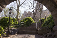 Stairs in central park. Stairs in beautiful sunny central park Royalty Free Stock Photography