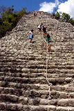 The stairs of coba ' temple in mexico Royalty Free Stock Image