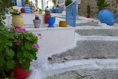 Stairs Cos. Stairs with plants in pots Kos Stock Photo