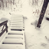 Stairs covered with snow Stock Images