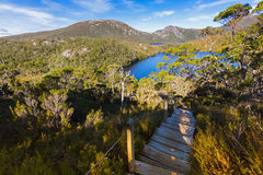 Stairs at Cradle Mountain. Elevated wooden steps with anti slip. Chicken wire mesh on nature trail to Lake Lilla and Dove lake at Lake Saint Clair National Park stock photography