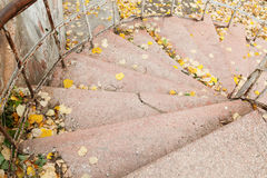 Stairs in the fall Stock Photos