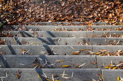 Stairs with fallen leaves Stock Photo