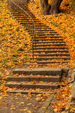 Stairs filled with autumn leaves Stock Images