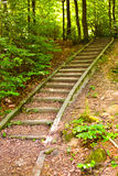 Stairs through forest Royalty Free Stock Images