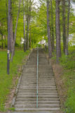Stairs through forest Royalty Free Stock Photo