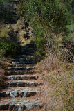 Stairs in the forest. Troodos. Near Millomeris Falls Stock Photo