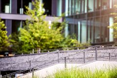 Stairs in front of glass buildings. Business office. Park with trees and grass in front of the Business center Stock Photography