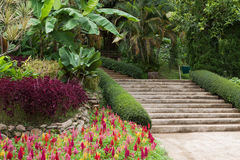 Stairs in garden Royalty Free Stock Images