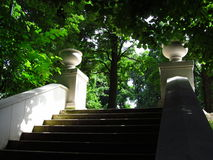 Stairs in the garden. A secret stairs in the city park hidden among the trees Stock Image
