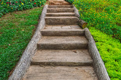 Stairs in the garden Stock Image