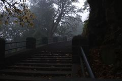 Stairs going up into the fall mist morning stock photos