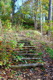Stairs going up a Hill in the Forest. Stairs on a hill in a Michigan forest Stock Photo