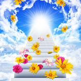 Stairs going up to heaven Royalty Free Stock Photos