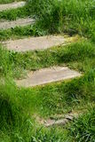 Stairs in grass on Helgoland Royalty Free Stock Photography