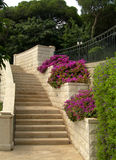 Stairs in Haifa park Royalty Free Stock Photos
