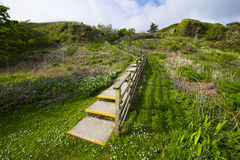 Stairs on the hill Royalty Free Stock Image