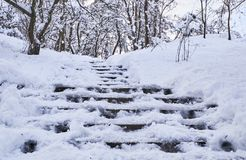 Free Stairs In Winter Park Covered With Snow. Stock Images - 127962474
