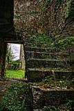 Stairs. Ireland abandoned serenity nature Stock Image