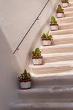 Stairs Italy Puglia Locorotondo Royalty Free Stock Image