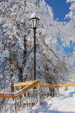 Stairs and lantern. At the background of snow-covered trees Royalty Free Stock Photography