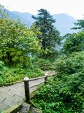 Stairs leading to summit of Mount Emei Royalty Free Stock Photos