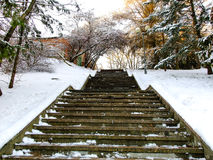 Stairs leading up to the Winter Royalty Free Stock Photography