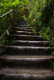 Stairs made ​​of mud Stock Photos