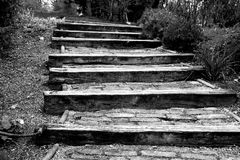 Stairs Made Of Wood in Park Royalty Free Stock Image