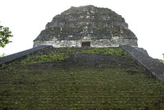 Stairs of a Mayan temple Royalty Free Stock Photography