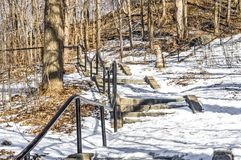Stairs in Mont Royal park, Montreal stock photo