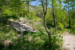 Stairs at the mountains. At summer time near Almaty, Kazakhstan Royalty Free Stock Image