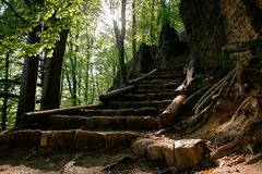 Stairs in the National Park Bohemian Switzerland. Beautiful view of long climbing stairs in the national park Bohemian Switzerland, Czech Republic stock images