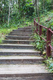 Stairs, through the nature trail in Asia Royalty Free Stock Photography