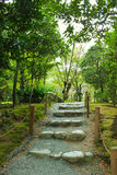 Stairs outdoor with plants Royalty Free Stock Images