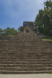 Stairs in palenque chiapas royalty free stock image