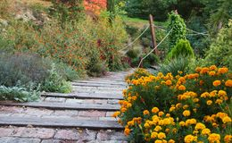 Stairs in park. Flower garden Royalty Free Stock Image