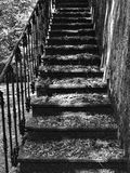 Stairs in the park Royalty Free Stock Image